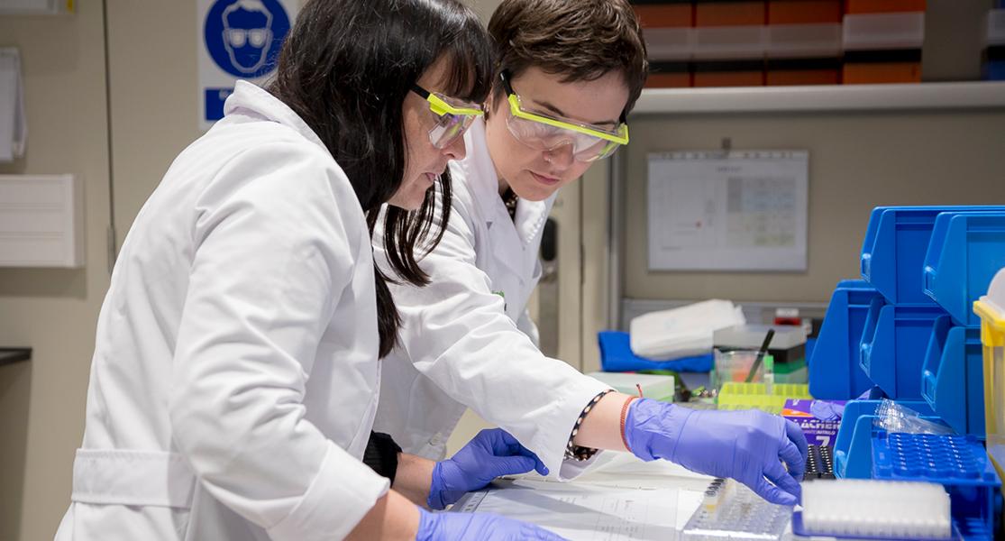 Investigadoras trabajando en el estudio de los biomarcadores de la enfermedad de Alzheimer